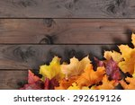 original autumn foliage in... | Shutterstock . vector #292619126