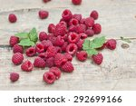fresh red raspberries from the... | Shutterstock . vector #292699166