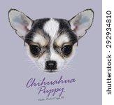 Chihuahua Animal Dog Cute Face...