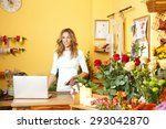 small business owner. portrait... | Shutterstock . vector #293042870