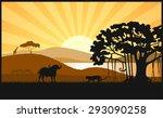 african savanna an evening... | Shutterstock .eps vector #293090258