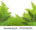 Illustration Of Fern Meadow...