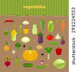 vector collection of fresh ripe ... | Shutterstock .eps vector #293224553