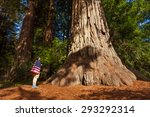 Small photo of Man with US flag on shoulders stands near big tree