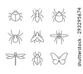 insect simple vector icon set   ... | Shutterstock .eps vector #293295674