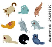 image of collection of cat icons | Shutterstock . vector #293399510