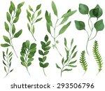 a set of vector watercolor... | Shutterstock .eps vector #293506796