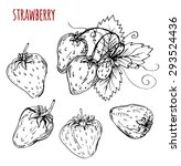 set strawberry drawing.... | Shutterstock .eps vector #293524436