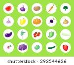 set of vegetables | Shutterstock .eps vector #293544626