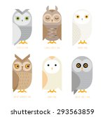 Stock vector cute vector owl characters showing different species vector illustration 293563859