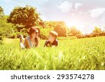 family lying on grass in park... | Shutterstock . vector #293574278