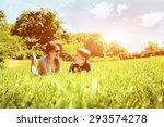 family lying on grass in park... | Shutterstock . vector #293574278