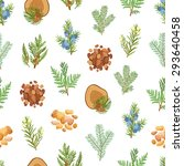 coniferous  pine  wood and... | Shutterstock .eps vector #293640458