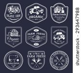vector retro set of farm fresh... | Shutterstock .eps vector #293647988