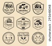 vector retro set of farm fresh... | Shutterstock .eps vector #293648048