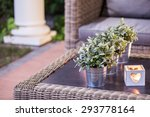 Flower Pots And Tealight On Th...