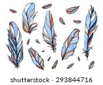 watercolor hand drawn stylized... | Shutterstock . vector #293844716