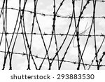 black and white barbed wire   Shutterstock . vector #293883530