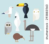 Different Birds Icons Set...