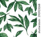 summer leaves. seamless  hand... | Shutterstock .eps vector #293923268