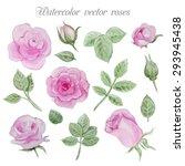 Watercolor Roses Elements Set ...