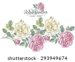 english rose | Shutterstock . vector #293949674