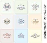 set of hipster retro badges ... | Shutterstock .eps vector #293962859