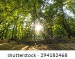 Fethiye Gunluklu Green Forest