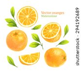watercolor vector oranges | Shutterstock .eps vector #294192689