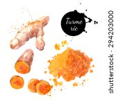 turmeric. hand drawn watercolor ... | Shutterstock .eps vector #294203000