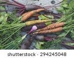 freshly harvested organic... | Shutterstock . vector #294245048
