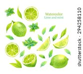 watercolor vector lime and mint   Shutterstock .eps vector #294258110
