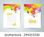 flyer brochure design template... | Shutterstock .eps vector #294315230