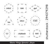 vector modern vintage geometric ... | Shutterstock .eps vector #294379298