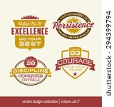 badge label collection with... | Shutterstock .eps vector #294399794