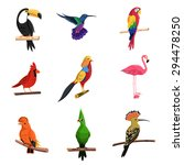exotic birds set with toucan... | Shutterstock .eps vector #294478250