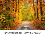 road in the autumn forest   Shutterstock . vector #294527630