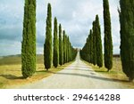 idyllic tuscan landscape with... | Shutterstock . vector #294614288