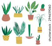 Exotic Plants In Pots....