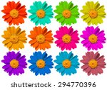 Beautiful Colorful Flowers...