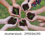hands holding sapling in soil... | Shutterstock . vector #295036190