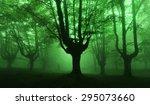 dark forest with green fog | Shutterstock . vector #295073660