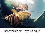 Underwater Shot Of The...