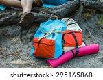backpack  | Shutterstock . vector #295165868