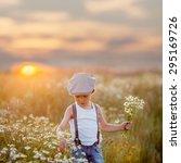 beautiful little boy in daisy... | Shutterstock . vector #295169726