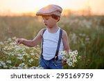 beautiful little boy in daisy... | Shutterstock . vector #295169759