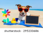 jack  russell dog at the beach... | Shutterstock . vector #295233686
