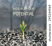 believe in your potential | Shutterstock . vector #295244969