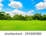 green park and tree with blue... | Shutterstock . vector #295300580