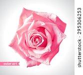 rose close up. vector art. love ... | Shutterstock .eps vector #295306253